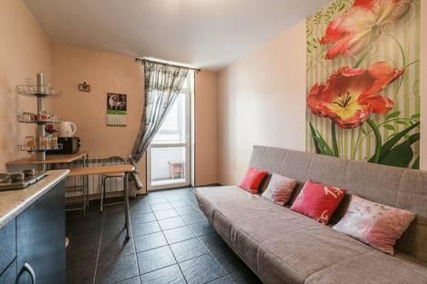 Сдается 1-комнатная квартира посуточно в Екатеринбурге, Шорса 103.