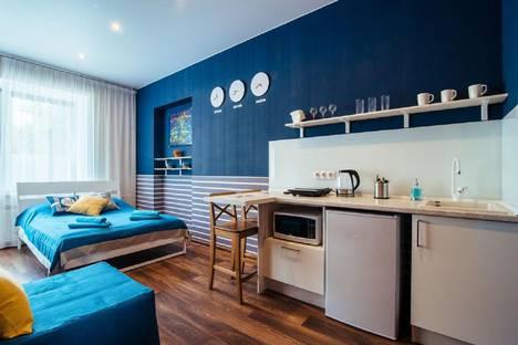 Сдается 1-комнатная квартира посуточно в Санкт-Петербурге, Конная улица, 4.