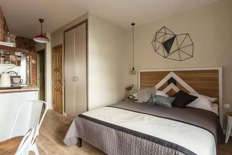 Сдается 1-комнатная квартира посуточно в Санкт-Петербурге, переулок Ульяны Громовой, 8Б.