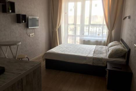 Сдается 1-комнатная квартира посуточно в Воронеже, улица Независимости, 84.