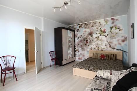 Сдается 1-комнатная квартира посуточно в Воронеже, ул. Революции 1905 года, дом 31а.