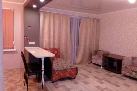 Сдается 1-комнатная квартира посуточно в Уфе, Ленина, 59.