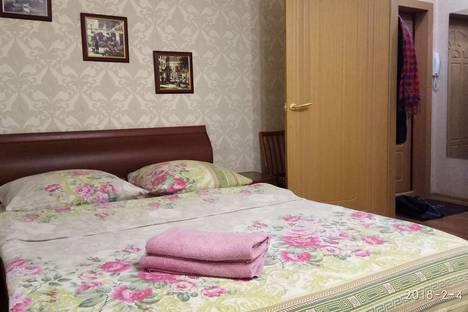 Сдается 1-комнатная квартира посуточно в Пензе, Терновского 207.