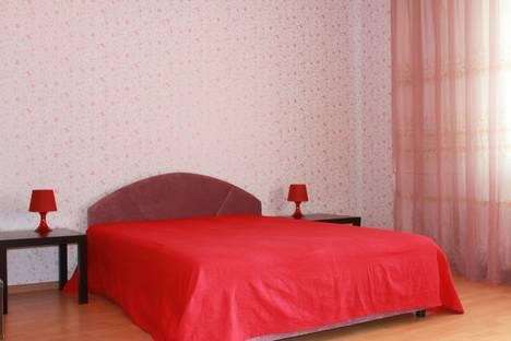 Сдается 1-комнатная квартира посуточнов Петергофе, Ленинский проспект д 114  ( №8).