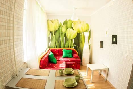Сдается 1-комнатная квартира посуточнов Казани, ул. Николая Ершова, 61.