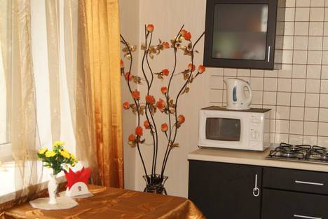 Сдается 1-комнатная квартира посуточнов Санкт-Петербурге, ул. Рентгена, 15.