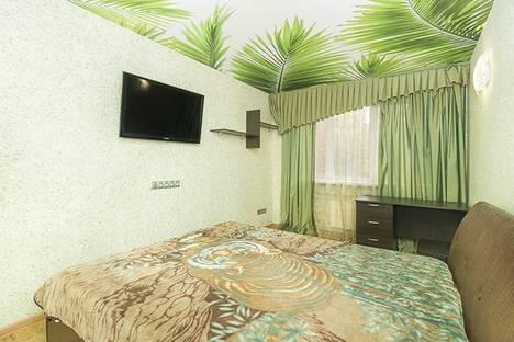Сдается 2-комнатная квартира посуточнов Екатеринбурге, ул. Куйбышева, 137.