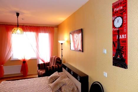 Сдается 1-комнатная квартира посуточнов Санкт-Петербурге, Индустриальный пр.23.