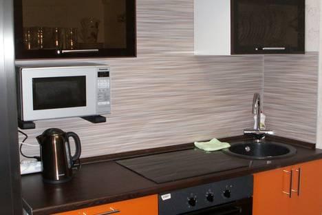 Сдается 1-комнатная квартира посуточнов Санкт-Петербурге, Индустриальный проспект, 10-1.
