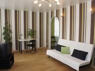 Сдается посуточно 1-комнатная квартира в Екатеринбурге. 50 м кв. Луначарского 180