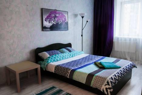 Сдается 1-комнатная квартира посуточно, Санкт-Петербург,улица Михаила Дудина, 25к2.