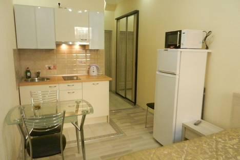 Сдается 1-комнатная квартира посуточнов Санкт-Петербурге, Конюшенный переулок, 1/6.