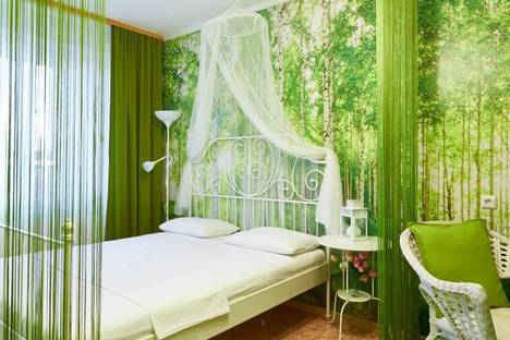 Сдается 1-комнатная квартира посуточнов Томске, Овражный переулок, 19.