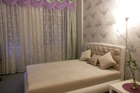 Сдается 1-комнатная квартира посуточнов Санкт-Петербурге, Радищева 26.