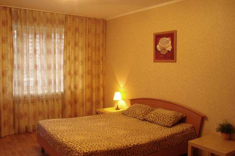 Сдается 2-комнатная квартира посуточно в Самаре, ул. Ново-Садовая 234.