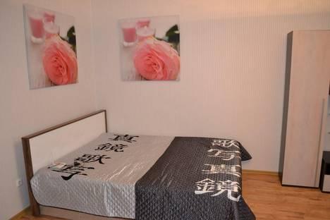 Сдается 1-комнатная квартира посуточно в Воронеже, ул. Карла Маркса, 116а.