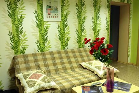 Сдается 2-комнатная квартира посуточнов Бору, Горная д.11 корп.3.