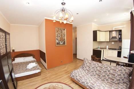 Сдается 1-комнатная квартира посуточно в Киеве, Ч. Белинского,10.