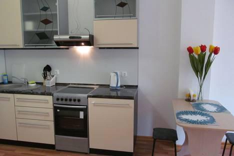Сдается 1-комнатная квартира посуточнов Екатеринбурге, ул. Стачек, 4.