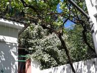 Сдается посуточно коттедж в Алуште. 40 м кв. Таврическая ,12