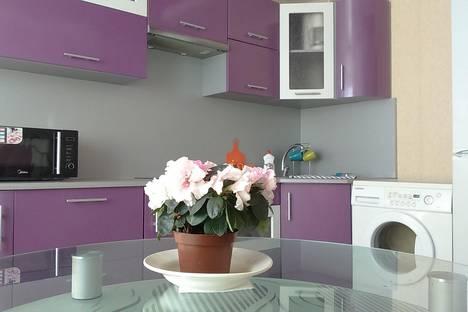 Сдается 1-комнатная квартира посуточнов Смолевичах, Боровляны, Александрова 4.